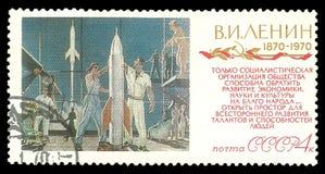 波斯菊的征服者 免版税库存图片