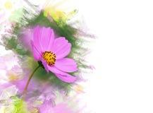 波斯菊花。水彩作用 免版税库存图片