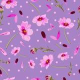 波斯菊花和小点花在绽放,无缝的重复样式 库存例证