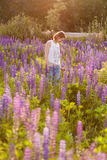 波斯菊花田的美丽的女孩在日落 在生动之下的去蓝色蝴蝶概念花飞行自由天空swallowtail 葡萄酒颜色 库存照片