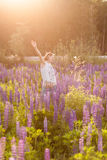 波斯菊花田的美丽的女孩在日落 在生动之下的去蓝色蝴蝶概念花飞行自由天空swallowtail 葡萄酒颜色 免版税图库摄影