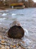 波浪击中一个树干 免版税库存照片