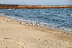 波浪和岩石在海 库存图片