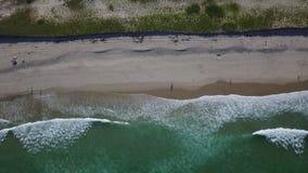 波浪和美丽的鳕鱼角海滩天线  股票视频