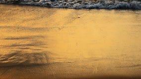 波浪和金黄沙子海滩 股票录像