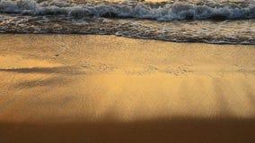 波浪和金黄沙子海滩 股票视频