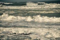 波浪在缅因的海岸的冬天 库存图片