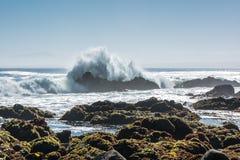 波浪在蒙特里,加利福尼亚 免版税图库摄影