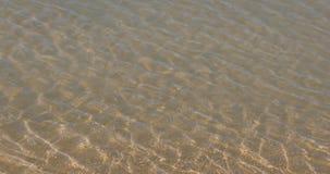 波浪形成处于低潮中 影视素材