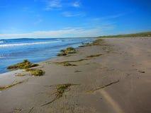 波浪洗涤在陆上在海滩 免版税库存图片