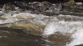波浪的特写镜头在河急流的 股票录像
