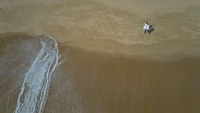 波浪移动通过滚动新娘新郎步行在沙子 股票视频