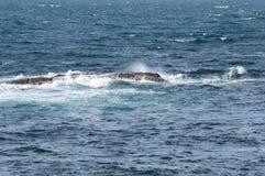 波浪被吞下的岩石 免版税库存图片