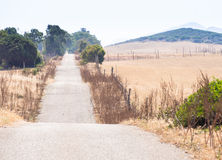 波浪起伏的乡下公路 免版税库存图片