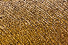 波浪起波纹湖表面自然背景 免版税库存照片