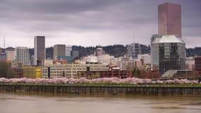 波特兰俄勒冈市地平线春天樱花威拉米特河 股票视频