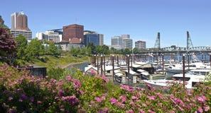 波特兰俄勒冈街市地平线小游艇船坞 免版税库存图片