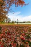 波特兰俄勒冈街市海滨公园秋天 免版税库存照片