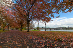 波特兰俄勒冈Waterfron公园在秋天 库存图片