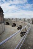 波特兰城堡多西特英国 免版税库存图片