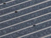 波状钢屋顶 免版税图库摄影