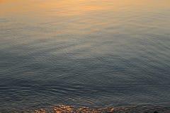 水波纹在Anilao 免版税库存图片
