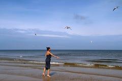 波罗的海、妇女走沿海滩的和哺养的白顾 图库摄影