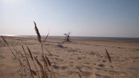 波罗的海与白色沙子在日落- 4K的海湾海滩有缓慢的照相机运动和内在安定的录影 影视素材