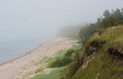 波罗的海岸在拉脱维亚 与松树的沙丘在backgr 免版税库存图片