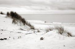 波罗的海岸,沙丘,沙子海滩,蓝天 免版税库存图片