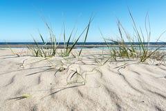 波罗的海海岸 库存图片