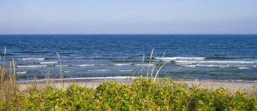 波罗的海,立陶宛 免版税图库摄影