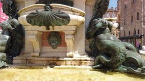 波隆纳美人鱼和海王星雕象  股票视频