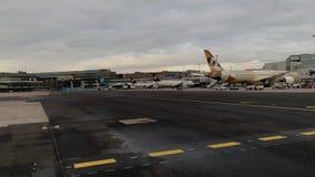 波音787-9从阿联酋联合航空的Dreamliner A6-BLN在法兰克福国际机场 股票视频
