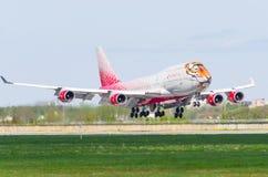 波音747 Rossiya航空公司老虎飞行,机场普尔科沃,俄罗斯圣彼德堡2017年5月 免版税库存照片
