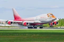 波音747 Rossiya航空公司老虎飞行,机场普尔科沃,俄罗斯圣彼德堡2017年5月 库存照片