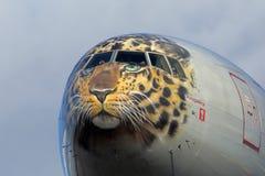 波音777-300 Rossiya航空公司EI-UNP在特别远东豹子色彩设计着陆的在伏努科沃国际机场 免版税库存图片
