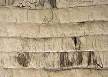 泥、竹子和秸杆墙壁纹理 库存图片