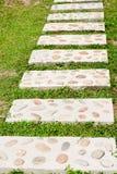 水泥和石头块走道草 免版税库存图片