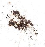 泥在白色背景隔绝的splat样式 免版税库存图片