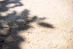 水泥地板和阴影背景和纹理 在模糊的焦点 免版税图库摄影