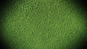 水泥墙壁绿灯 库存图片