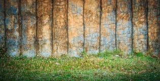 水泥树 库存图片