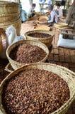 泥河,缅甸, 2016年9月12日:缅甸语烘干了准备好的果子和的仁出口到中国作为医学 图库摄影
