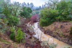 泥泞溪岗位8个月天旱 库存图片