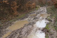 泥泞的土路 免版税库存照片