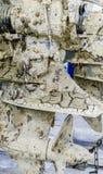 泥泞的外置马达 免版税库存照片