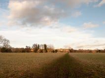 泥泞的棕色路通过农田草冬天光秃的树 图库摄影