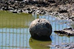 泥泞的橄榄球 免版税库存照片