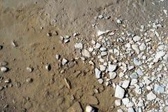 泥泞的水坑水和石头 免版税库存图片